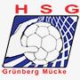 hsggruenbergmuecke